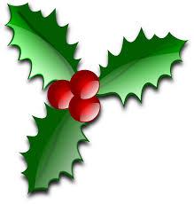 SSF_Holiday_Blog.jpg